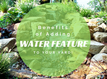 Benefits of Adding a Water Feature to your Yard!